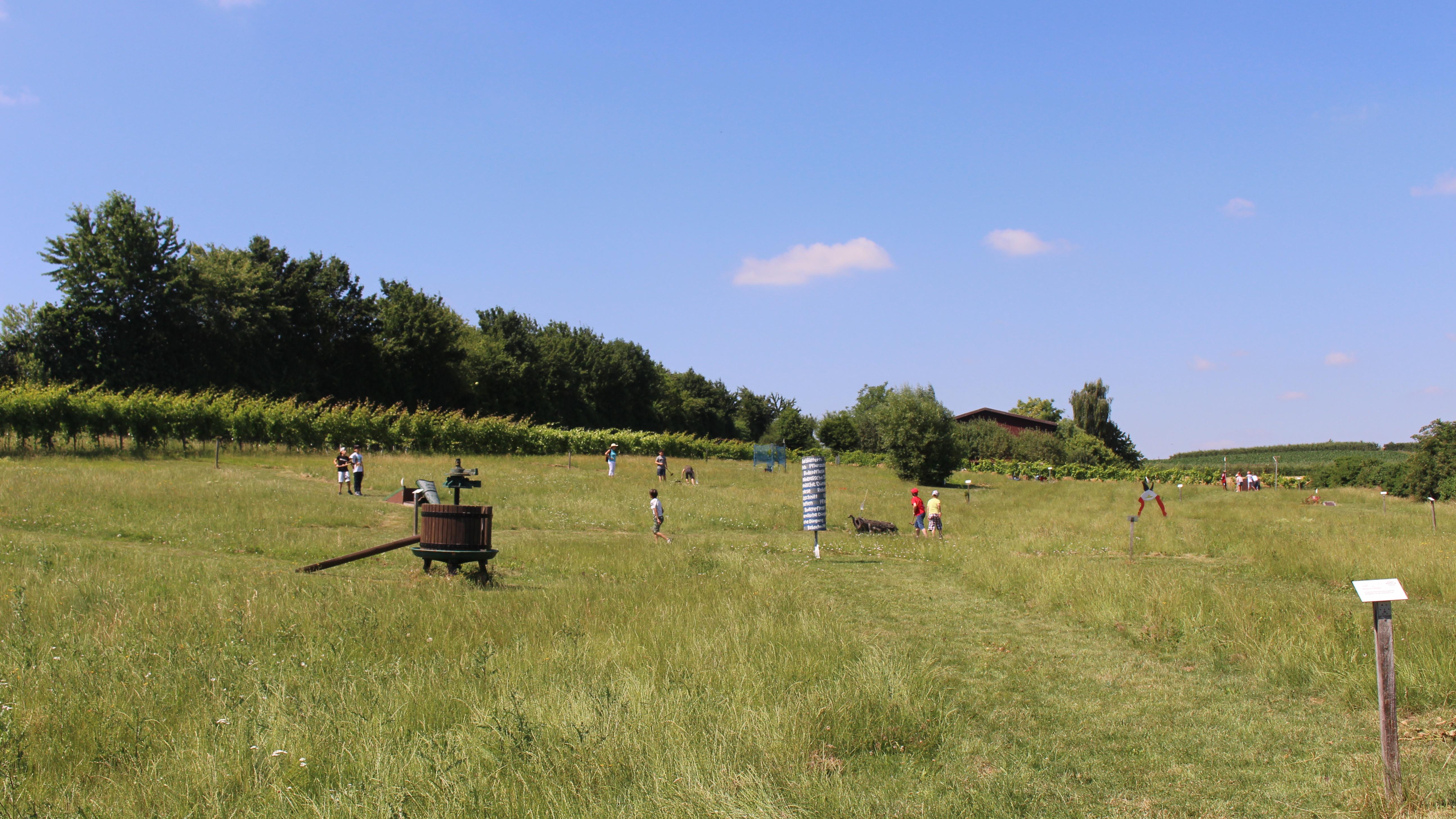 Wengerter-Golf in Brackenheim